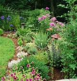 garden border designs on border garden that blends blooming perennials