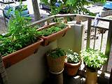 Balcony Ideas Garden | Homes Aura