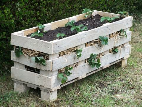 how to make a better strawberry pallet planter lovely greens
