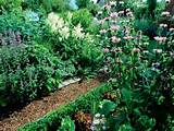 Creating a garden design ideas spring plants pathway rustic garden