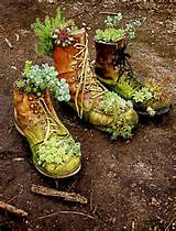 : For grade one science- upcycle…old boots turned succulent garden ...