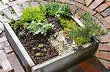 gardens. Learn how to make a mini garden just for them, a garden ...