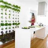 wall planters contemporary indoor pots and planters by garden