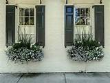 Charleston Window Boxes | garden | terrace | balcony | Pinterest