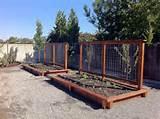 Trellis | Gardening | Pinterest