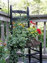 container garden ideas | Gardening | Pinterest