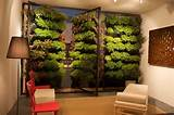 by powerhouse growers balcony container gardening indoor gardening