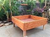 raised garden planter box bed for herbs flowers vegetables no