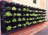 Vegetable Garden Ideas for Backyards and Balconies - Vertical ...