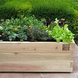 All Products / Outdoor / Outdoor Decor / Outdoor Pots & Planters