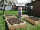 gardening raised garden bed design raised garden bed design ideas