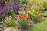 Garden Ideas, Border ideas, Perennial Planting, Perennial combination ...