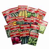 Best Gift Idea Ferry Morse Large Vegetable Garden, 17 - Piece Set