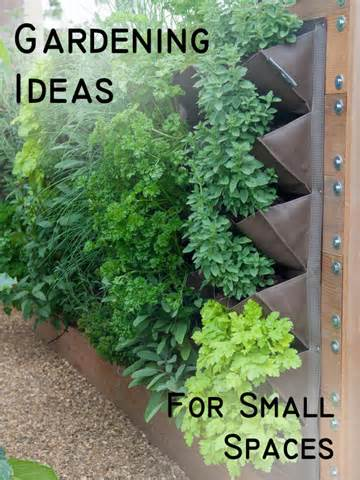 Gardening Ideas for a Small Space - Sunlit Spaces