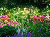 ... perennial flower garden design 2160 x 1440 1489 kb jpeg flower garden
