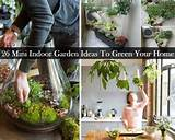 26 mini indoor garden ideas gardening and outdoors pinterest