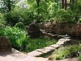 27 Unique Backyard Garden Ideas - SloDive