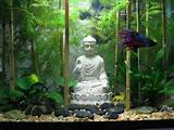 ideas gardens aquascaping buddha rocks fish tanks decor zen buddha