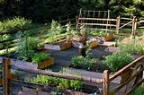 Raised Bed Vegetable Garden - Traditional - Landscape - other metro ...