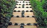 Creative Garden Projects and Diy Path Ideas 5