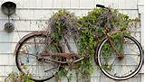 Bike trellis - one of 10 unusual trellises eclecticallyvintage.com