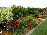 hot colors in the border at university of illinois