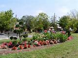 ... many seasons of Eastland Gardens & the Eastland Gardens Flower Club