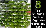 Vertical Vegetable Gardening Ideas | DIY Home Life - Creative Ideas ...
