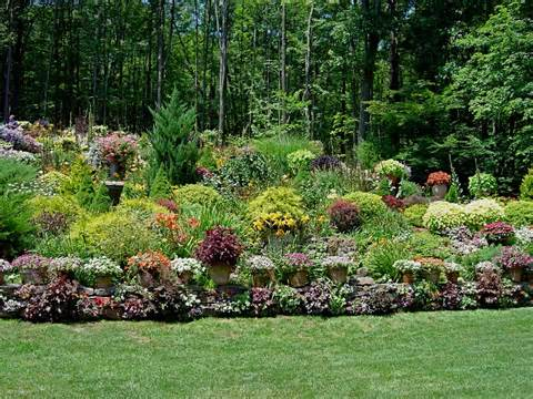 seed to harvest lawn edging ideas landscaping ideas for slopes