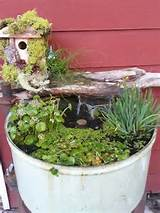 my fairy garden goldfish pond ideas for the home and yard pintere