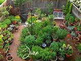 Potted Vegetable Garden Ideas: 14 Astounding Potted Garden Ideas ...