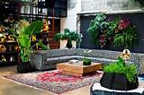 indoor-garden-for-living-room-design-ideas - FelmiAtika.com