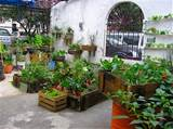 general architecture urban farm organic garden ideas