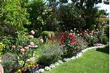 ideas cottage garden cottage garden my roses gardens design