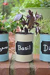 this diy kitchen herb garden is a great upcycled gardening project
