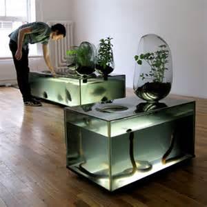 aquarium indoor gardening indoor ecosystem urban gardening indoor