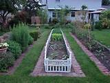 vegetable garden in spring gardening pinterest