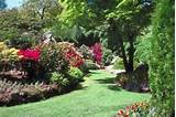Cheap & Creative Landscaping Ideas (with Pictures) | eHow