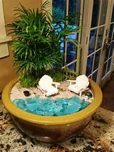 mississippi my countertop beach themed fairy garden love it