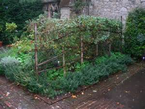 Make rectangular trellises for raspberry plants using this style.