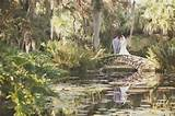 Vero Beach - McKee Botanical Garden - Photography by vitalicphoto.com ...