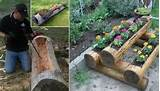 hollowed out log planters garden pinterest