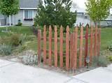 fences gates landscaping ideas pictures designs photos