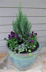 winter container gardening on pinterest winter hanging baskets fall