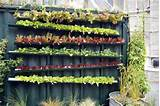 20+ Vertical Vegetable Garden Ideas | Home Design, Garden ...