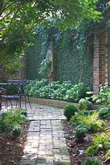 gardens paths green wall gardens heat yard ideas wall gardens