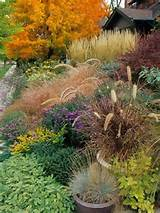 Lovely colors of the Fall garden ♥ | Garden ideas | Pinterest