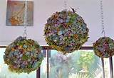 indoor garden ideas gardens pinterest