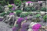 rock gardens rain garden designer lyndale park peace rock garden