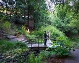 over Winter Creek at the UC Botanical Garden in Berkeley California ...